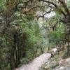 Trail Nayapul a Ghorepani