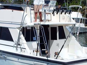 Deap Sea Fishing 33' or 34'ft Charter 4 hrs. Photos