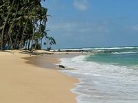 Srilanka Budget Tour/Ran Holidays