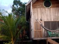 Green Parrot Cabana
