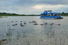 Hippo Tour - St. Lucia