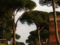 Tombs of Via Latina