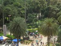 Jardim da Luz