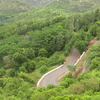 Road View From Sirumalai View Point