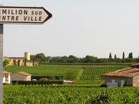 St Emilion Sign & Vines