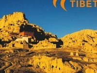 Tibet Tour and Travel Agency