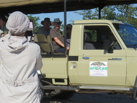 African Bush Lovers Travel and Tours Safaris