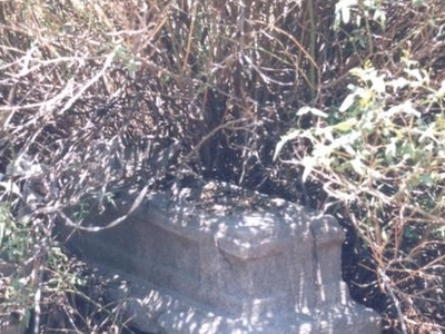 A  Grave In The Cemetry