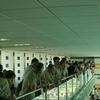 Akwarium Indoor Swimming Pool