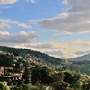 Almora Holiday Package
