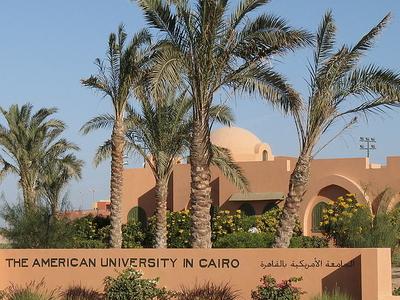 American University Of Cairo