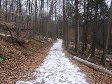 Appalachian Trail In New Jersey