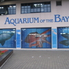 Aquarium By Pier 39