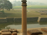 Pillars Of Ashoka