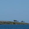Parque Nacional Marino de Abrolhos