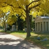 Autumn In Fairmount Cemetery