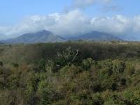 West Bali Parque Nacional