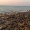 Beach At Failaka Island