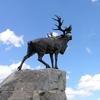 Bronze Caribou Memorial