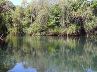 Berry Springs Nature Park