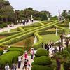 Botanical Garden At Oedo