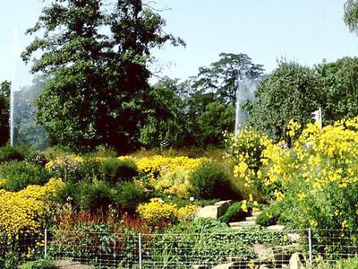 Botanical Garden, Linz