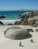View Of Boulders Beach