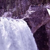 Brink Of The Lower Falls - Yellowstone - USA