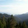 Borjomi Forests