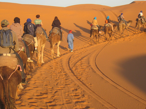 Casablanca Desert Tours Fotos