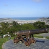 Cannon @ Mount Victoria - Wellington NZ