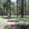 Cape Final Trail