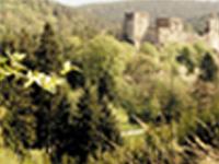Castle Ruin Kronsegg