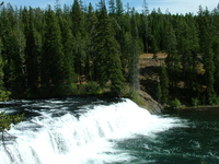 Yellowstone Adventure - Geysers and Grizzlies 10 Days