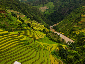 Discover Vietnam Highlights Fotos
