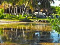 Our Natrual Shoreline