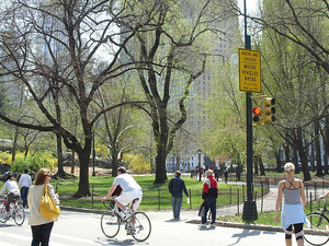 1/2 Off Our NYC Walking and Drinking Tours Photos