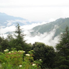 Chail Hill Station