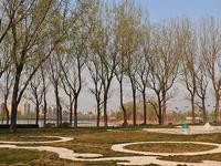 Beijing Chaoyang Park