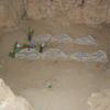 Che Graves