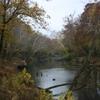 Clarks River Kentucky