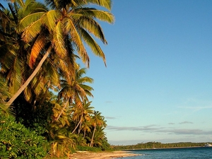 Magnificent Fiji 6 Day Package