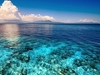 Corals And Blue Water Of Pacific Ocean