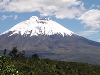 Cotopaxi View