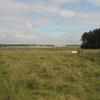 Stonehenge Landscape