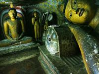 Sri Lanka - Your Tour, Your Choice, Private Tour