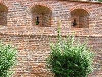 Murallas y mazmorras en Przeworsk