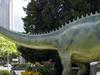 Diplodocus Longus Dinosaur Model