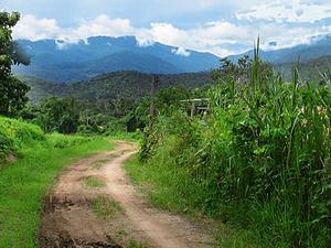 Doi Suthep, bueno Parque Nacional