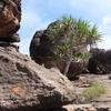 Nawurlandja Lookout - Northern Territory
